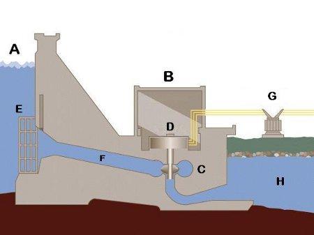 Fallande vatten och miljöaktivism 03